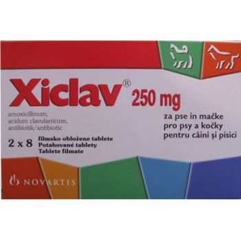 Antibiotic XICLAV 250 mg -16 tablete pisici