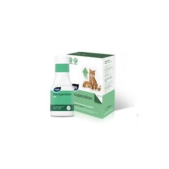 Medicament Viyo Recuperation Cat - 3X150 ml pisici