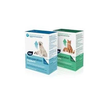 Viyo Recuperation Dog 3x150ml