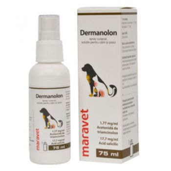 Dermanolon spray, 75 ml