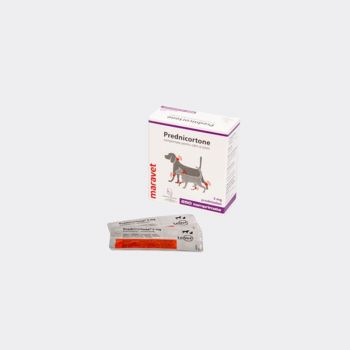 Prednicortone 5 mg, 250 tablete
