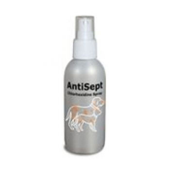 AntiSept 100 ml